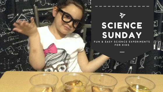 Science Sunday Title