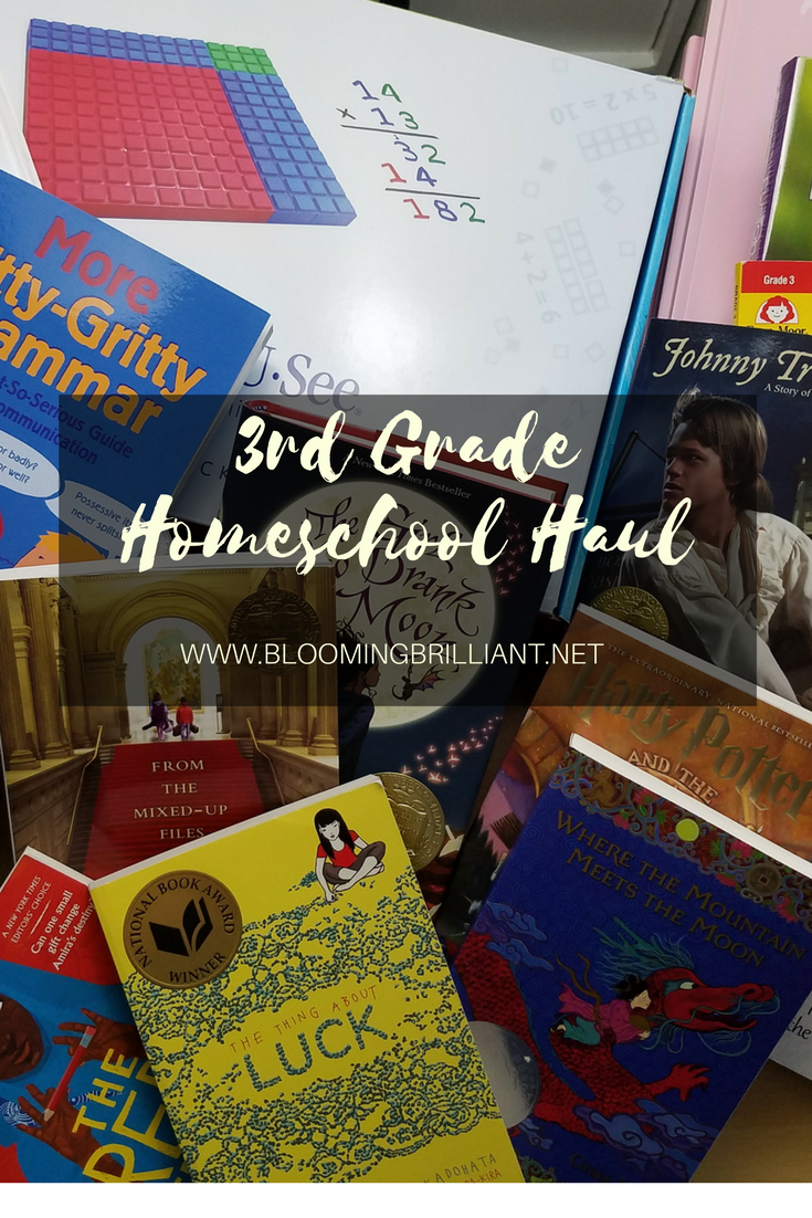 What are we going to use for 3rd grade? If you want to know what we will be doing in our homeschool this year then you need to check out our 3rd grade homeschooling haul