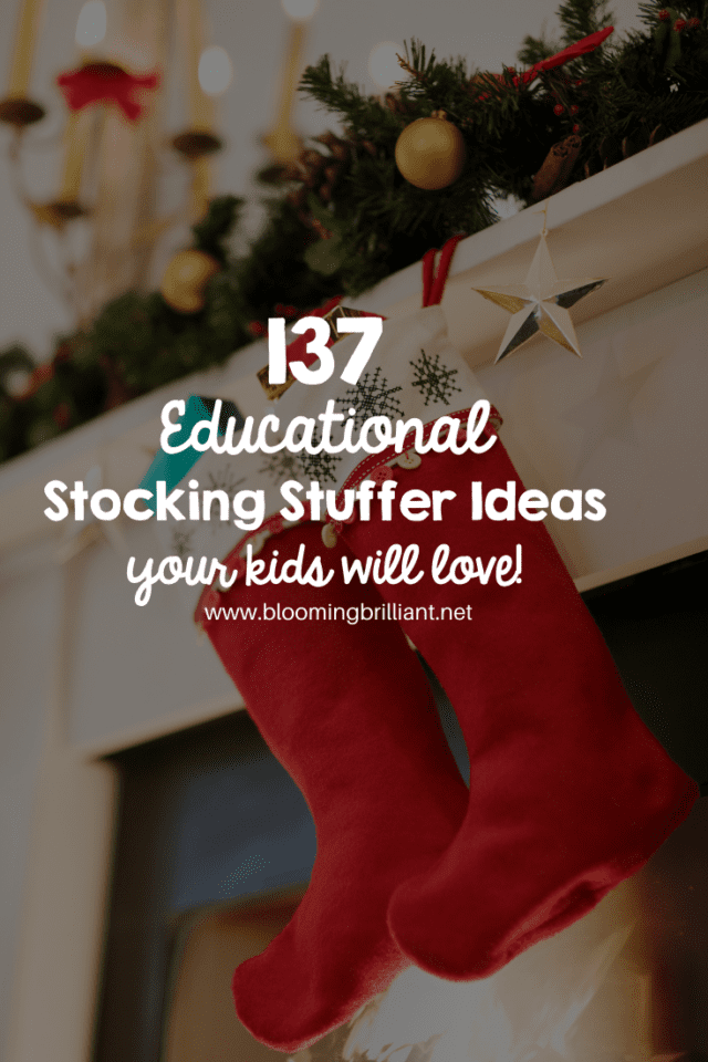 Educational Stocking Stuffer Ideas for your Kids